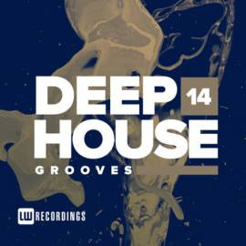 VA - Deep House Grooves Vol 14 (2019) MP3